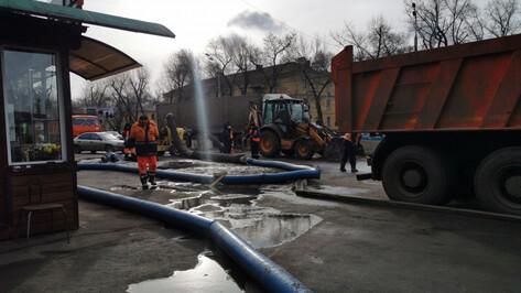На левом берегу Воронежа вновь перегородили дорогу из-за обрушения коллектора