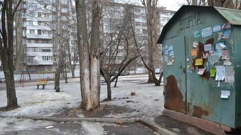 Реклама, памятник Юрию Хою и драка из-за парковки: что обсуждают воронежцы в соцсетях
