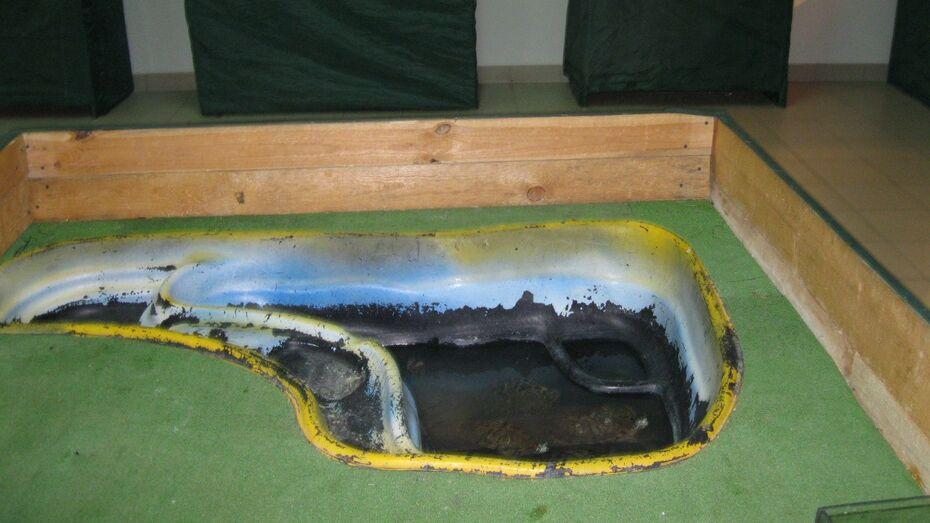 Выставка с крокодилами, которую зоозащитники выгнали из Воронежа, отправилась в Лиски