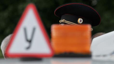 МВД предложило допускать на экзамены по вождению с 16 лет