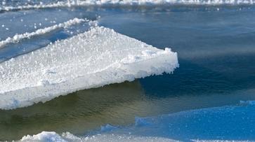 Отколовшаяся льдина сорвала понтонный мост в Воронежской области