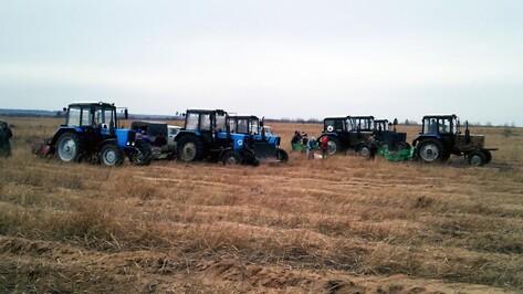 Осенняя «лесная» кампания стартовала в Воронежской области