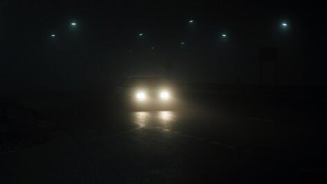В Воронежской области сбивший девушку водитель скрылся с места ДТП