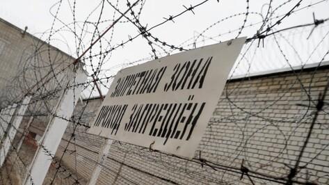 Адвокат Александра Емельяненко опроверг освобождение бойца из воронежской колонии