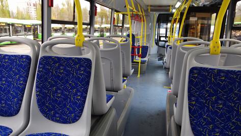 Вторую партию крупных автобусов в Воронеже выпустят на 3 маршрута