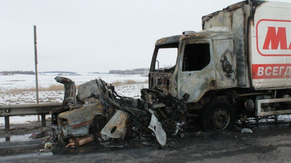 Сгоревшим водителем Hyundai в Воронежской области оказался 31-летний борисоглебец