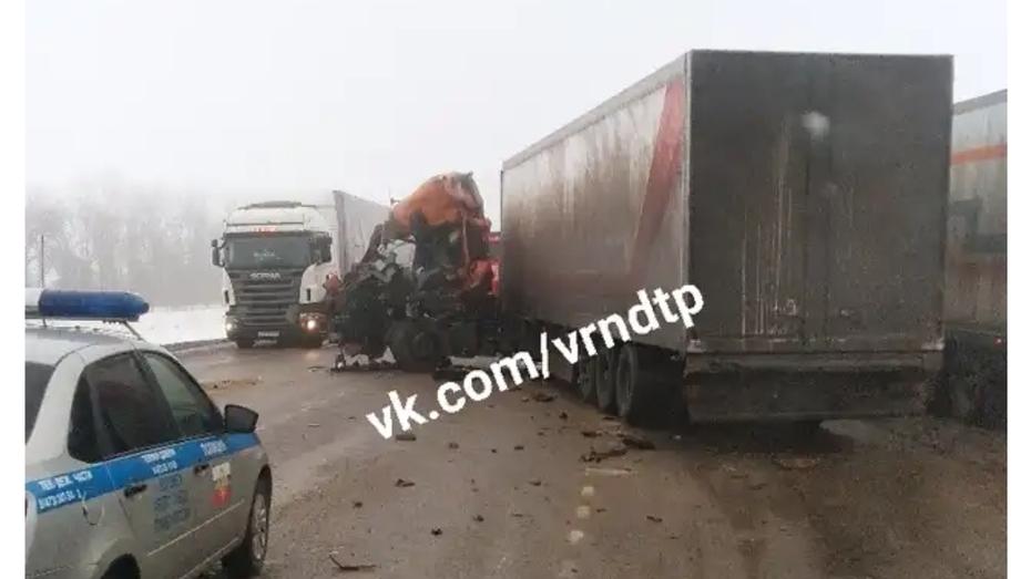 В Воронеже попросили откликнуться очевидцев смертельного ДТП с тремя грузовиками