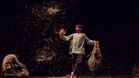 В Воронеже показали хореографическую постановку по картинам Ван Гога