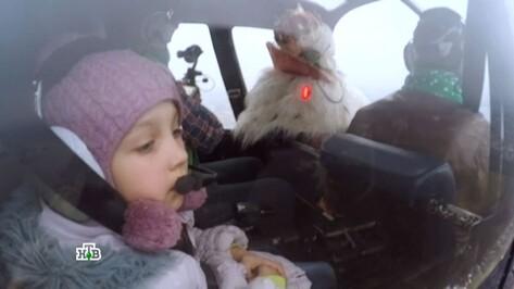Воронежская девочка полетала на вертолете с Дедом Морозом из Великого Устюга