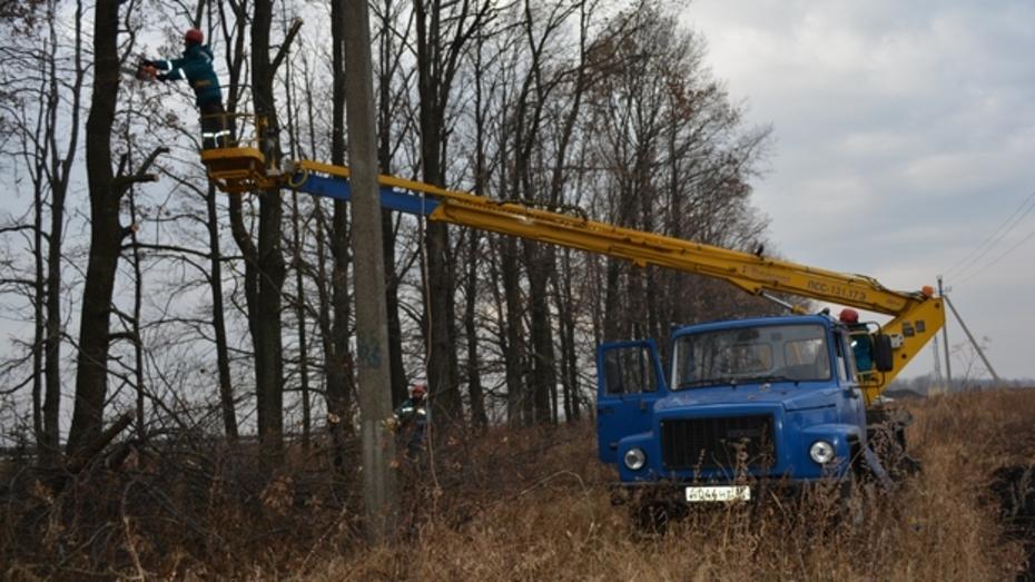 Нижнедевицкие электрики  перевыполнили план по расчистке трассы