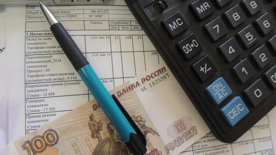 Воронежец вернул в федеральный бюджет 12,5 млн рублей неуплаченных налогов