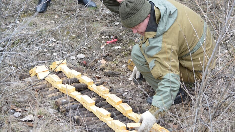 В Богучарском районе уничтожили боеприпасы времен войны