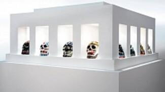 Воронежская академия искусств выставит в Доме офицеров курган из фарфоровых черепов