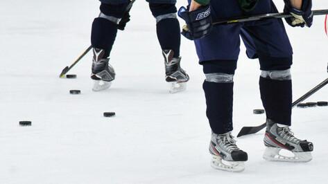 Хоккейная «Россошь» проиграла петербургскому «Динамо-Юниору»