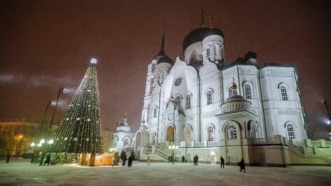 Воронежский губернатор Алексей Гордеев встретил Рождество в Благовещенском соборе