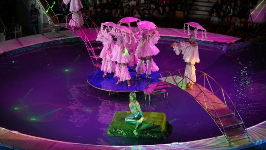 Воронежцы увидят «Парад свето-музыкальных фонтанов»