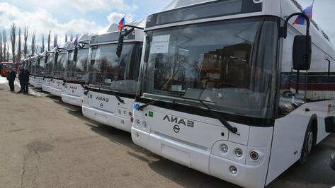 Воронеж и Липецк связал новый автобусный маршрут