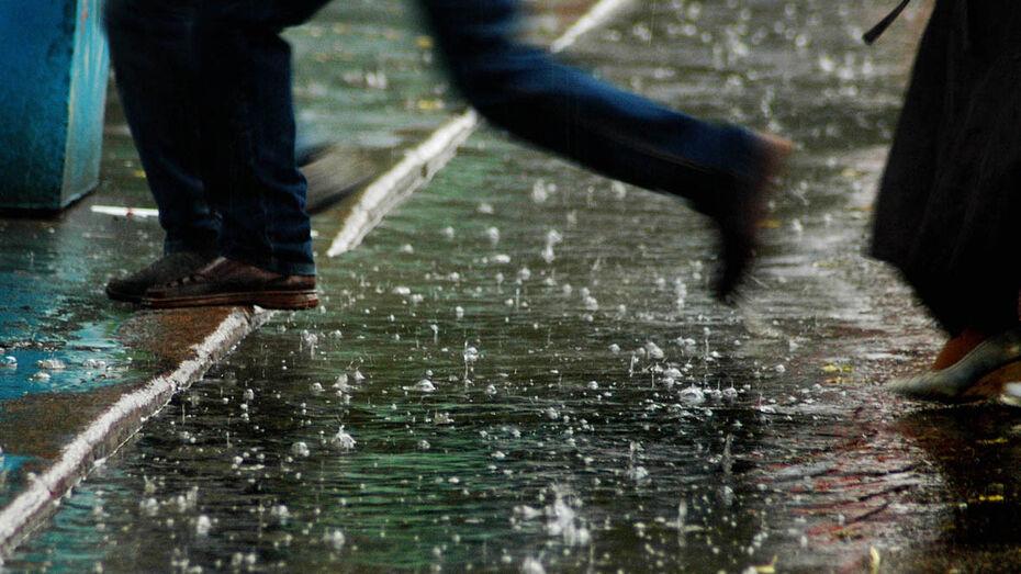 Грозы и дожди с градом ворвутся в Воронежскую область
