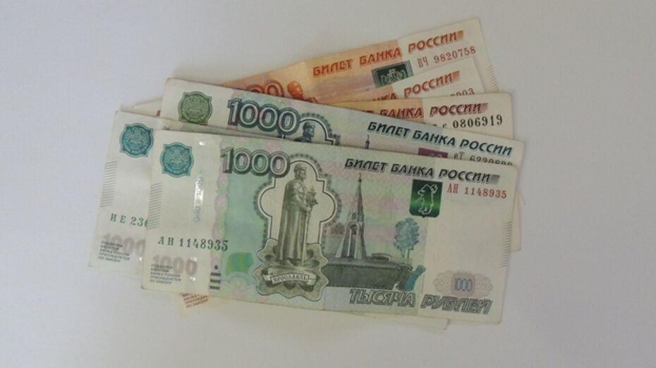 Средняя зарплата в Воронежской области в 2015 году составит более 26,6 тыс рублей