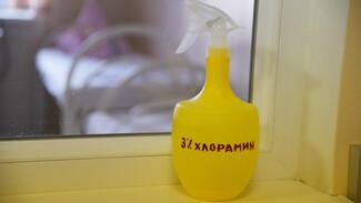 От коронавируса избавились еще 269 жителей Воронежской области