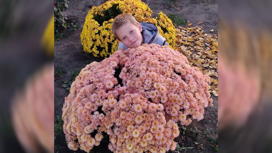 Школьник из воронежского села вырастил 80 видов цветов