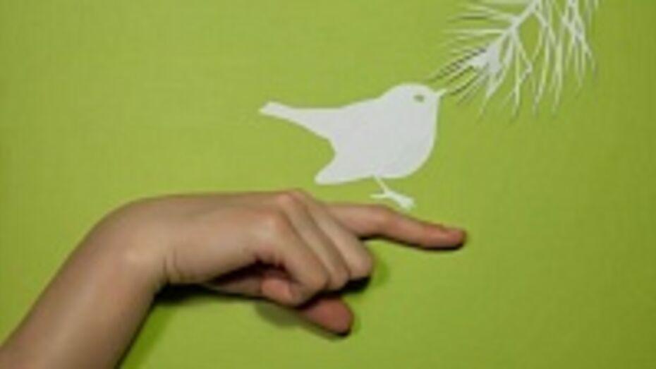 В Воронеже создали мультфильм о птицах по тексту Пескова