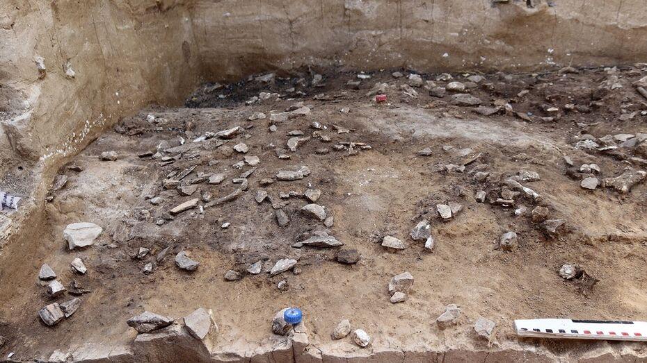 Древнейшее в Восточной Европе поселение современного человека нашли в воронежских Костенках
