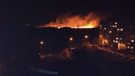 Очевидцы: в воронежском микрорайоне Шилово загорелась сухая трава