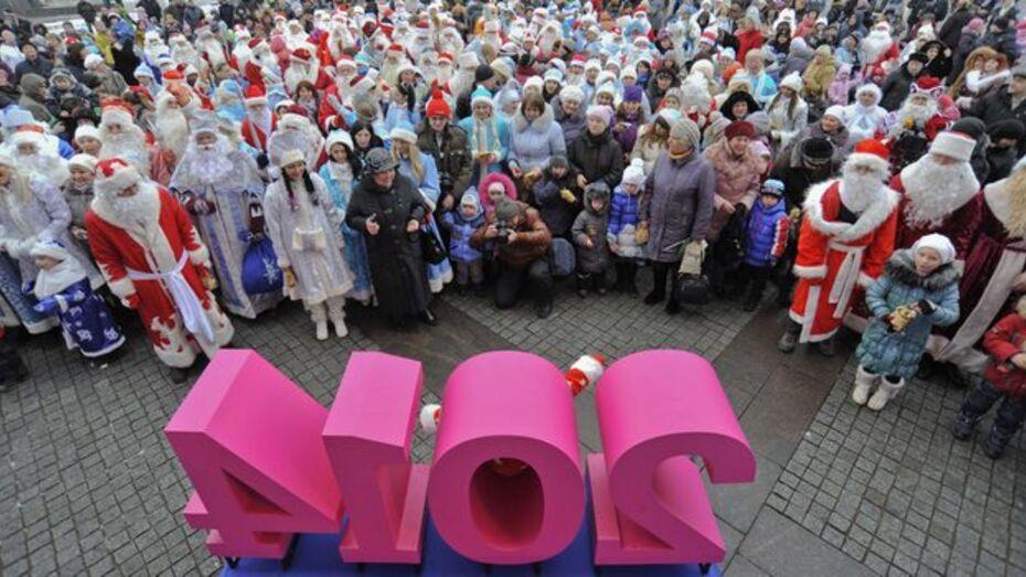 Мэр Воронежа Александр Гусев: «Отменять новогодние мероприятия не будем»