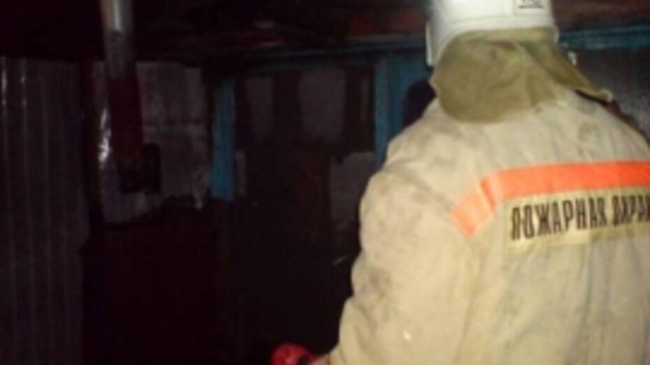 В Воронежской области на пожаре погиб 40-летний мужчина