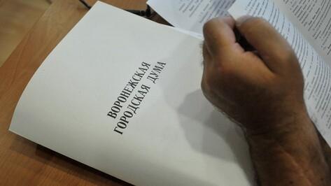 Воронежская гордума заблокировала приватизацию турбазы «Росинка»