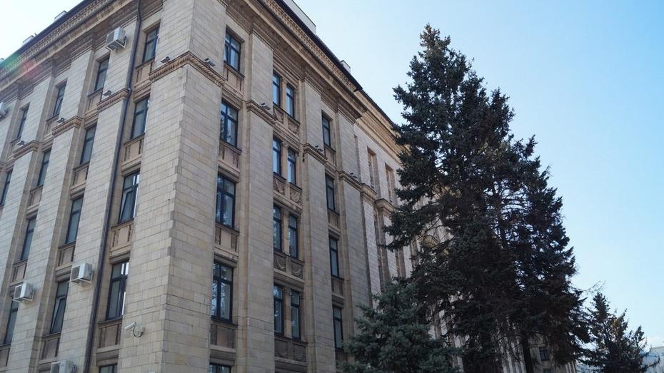Руководители департамента культуры и управления архитектуры Воронежской области найдутся по интернету