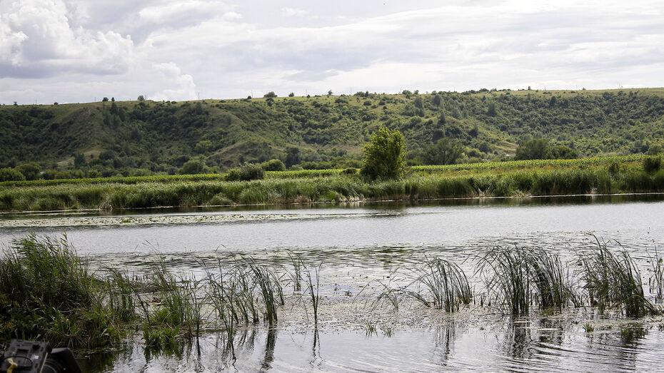 Тело мужчины вытащили из озера под Воронежем