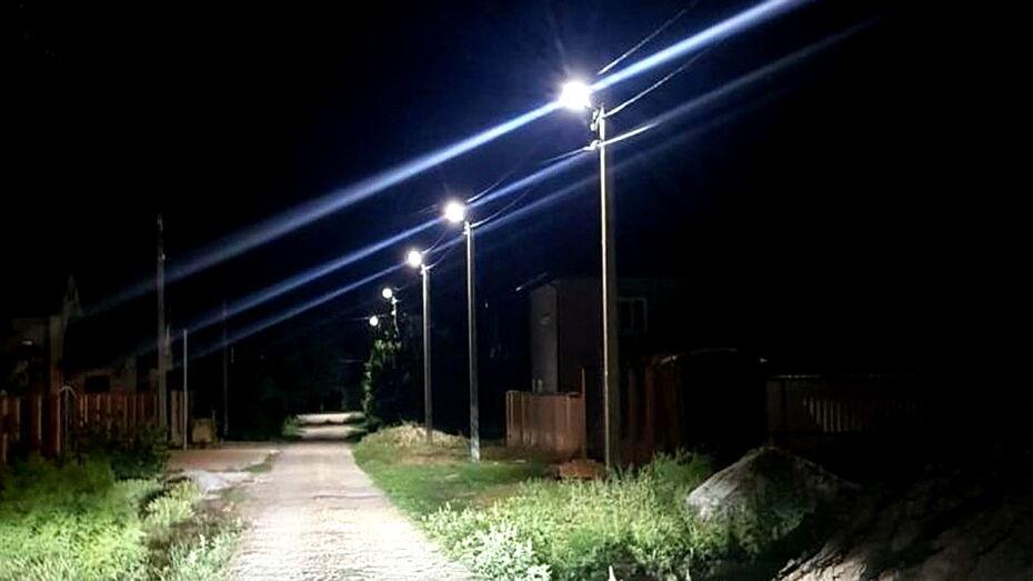 Освещение в 36 воронежских поселениях модернизируют по областной программе