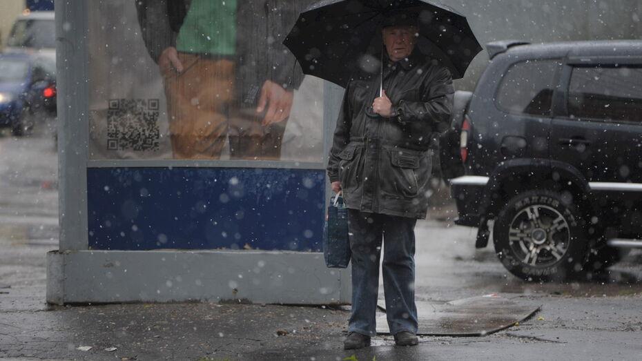 Ночной снег может пойти в Воронеже на рабочей неделе