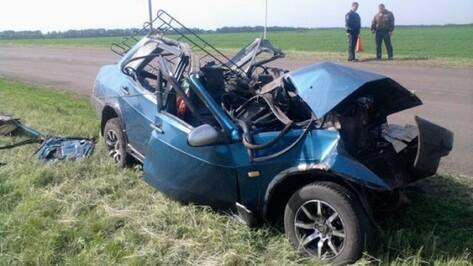 В Поворинском районе в ДТП погиб житель Саратова