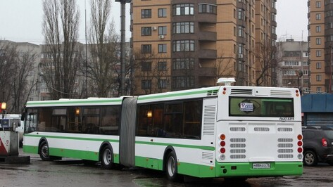 В Воронеже для маршрута №64 докупили 2 автобуса-гармошки