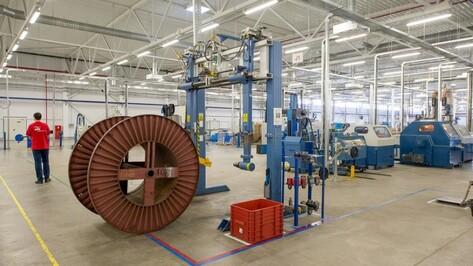 В Воронежской области в 2014 году запустились 10 новых производств