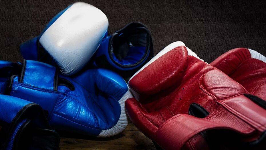 Богучарские боксеры завоевали 7 медалей на областном турнире