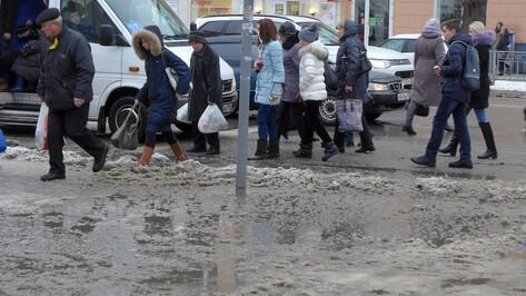 Синоптики пообещали теплые выходные в Воронеже