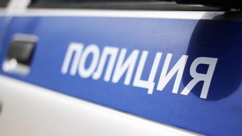 Двое воронежцев угнали автомобиль у водителя маршрутки с помощью его дочери