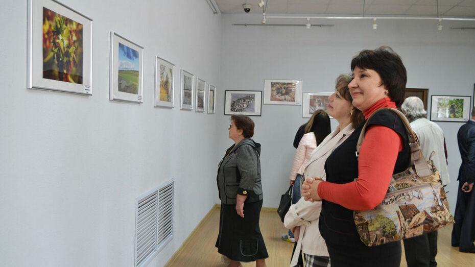 В Калаче открылась выставка фотопейзажей