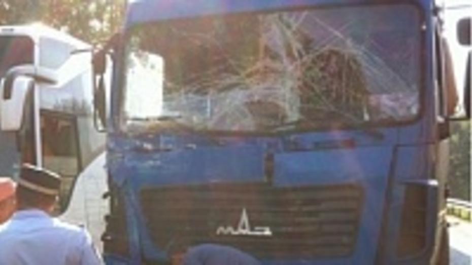 Грузовик «МАЗ» врезался в автобус на 666 км трассы «Дон» в Воронежской области