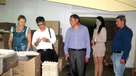 Ученые из Китая посетили животноводческие хозяйства Хохольского района