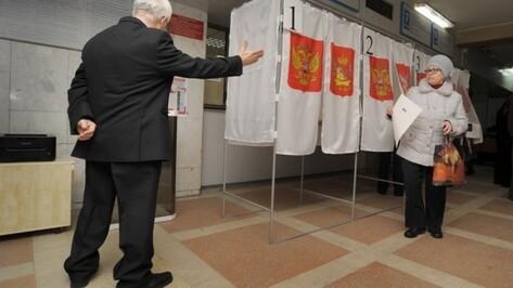 Воронежцам предложили высказаться об отмене выборов мэра