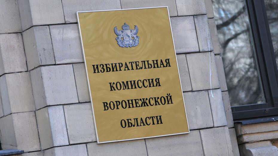 В Воронежской области на выборы в Госдуму выдвинулись 39 человек
