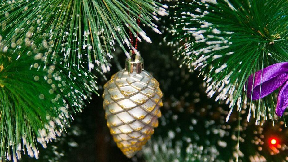 Главную воронежскую елку посетят 18 поворинских детей