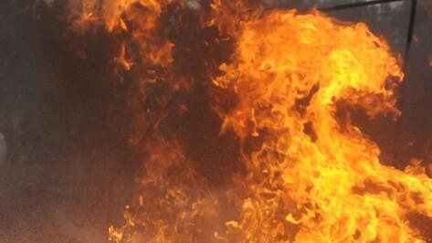 Хозяйка дома погибла при пожаре в кантемировском селе Митрофановка