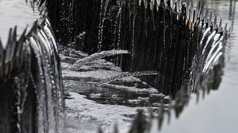 Проект территории водоподъемной станции в Воронежской области появится в конце года