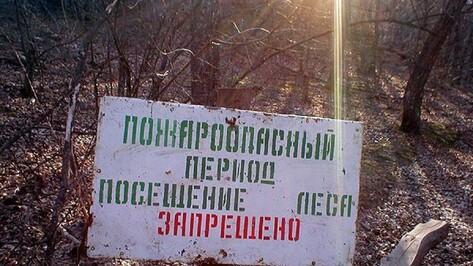 С 30 апреля в Воронежской области введут особый противопожарный режим